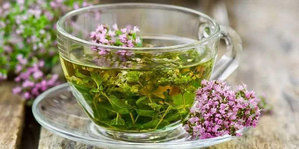 Чай с душицей является народным средством при лечении хирургического климакса