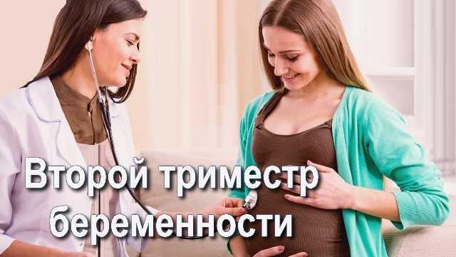 Девушка у врача на втором триместре беременности