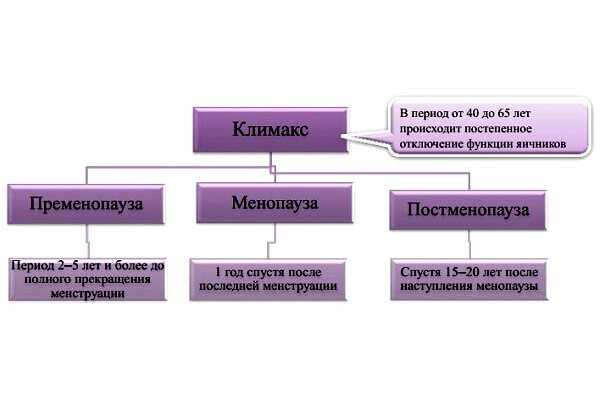 Особенности менструации при климаксе