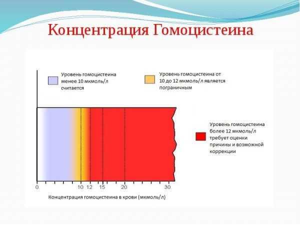 Оценка уровней концентрации гомоцистеина в крови