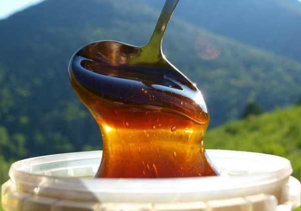гречишный мёд стакает с ложки