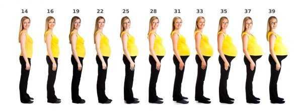Изображения девушки на разных сроках беременности