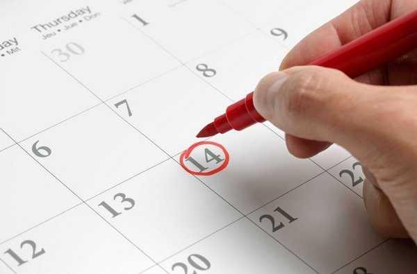 Красным карандашом обводят 14 число в календаре