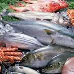 Морская рыба и крабы