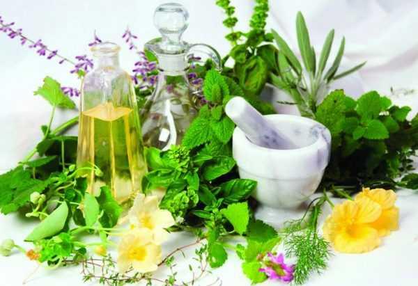 Лекарственное сырьё, фарфоровая чашка с пестиком и два флакона с маслом