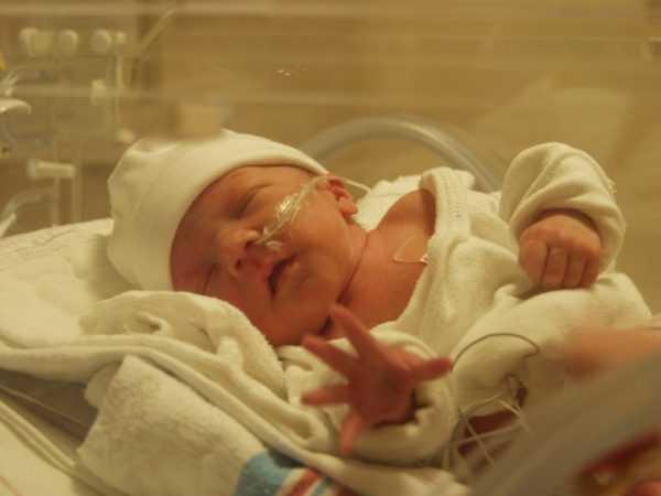 новорождённый в кювезе