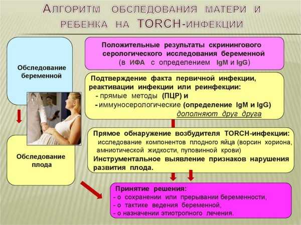 Обследование матери и ребёнка на TORCH-инфекции