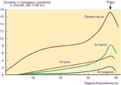 Уровень прогестерона при беременности: график