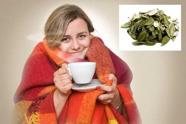 Простуженная женщина пьёт напиток из брусничного лица