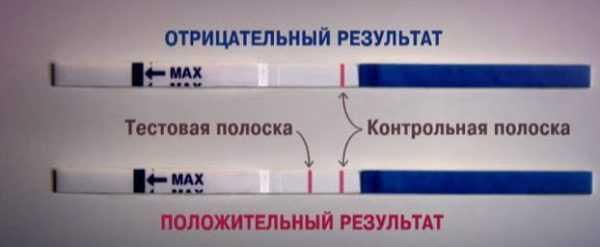 Расшифровка результата теста на беременность