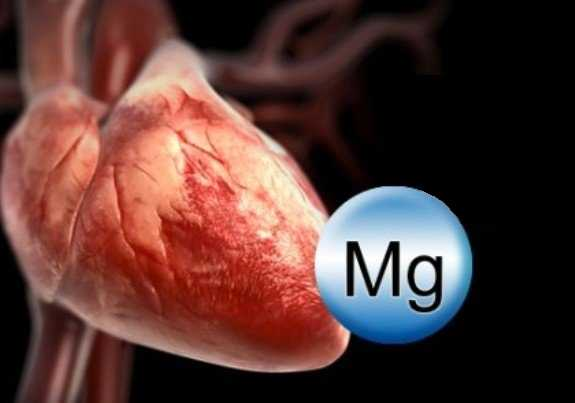 Сердце человека и значок магния