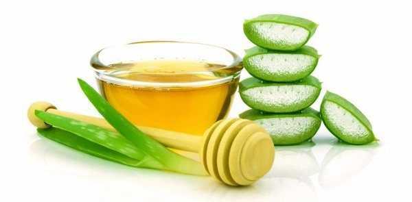 В тарелке налит мёд, рядом лежат листья алоэ